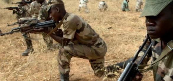 L'armée du Niger aide son voisin, le Nigéria.
