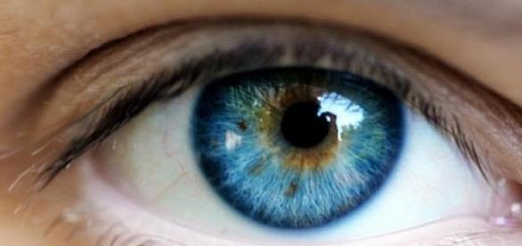 Doar 17% din populatie se bucura de ochi albastri