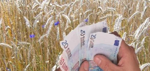 Gigantyczne pieniądze do wzięcia dla rolnictwa
