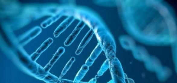 ADN-ul este o sursa inepuizabila de surprize