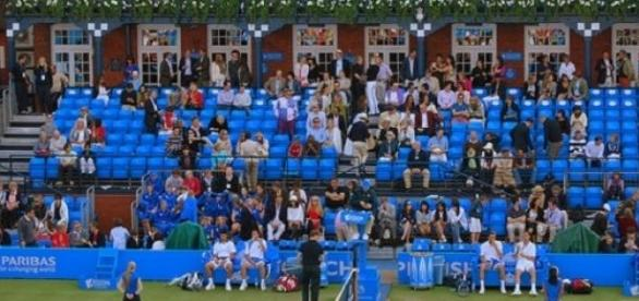 Queen's Club looking likely venue for Davis Cup