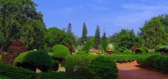 Jardins portugueses entre os melhores do mundo