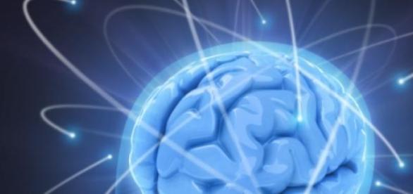 Limites do cérebro ainda são desconhecidos