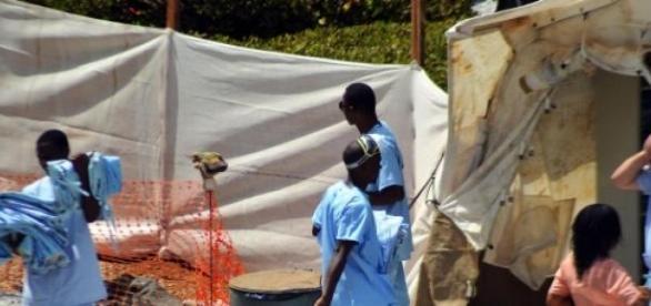 Médicos sem fronteiras trabalham ativamente