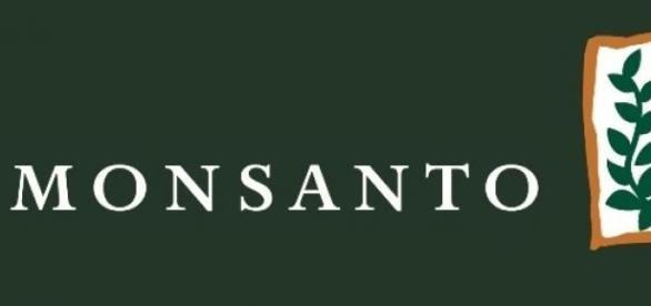 Monsanto do Brasil recebe inscrições para estágios