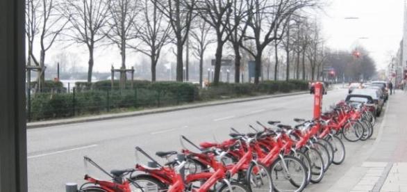 Hamburgo, Alemanha, está criando uma 'rede verde'