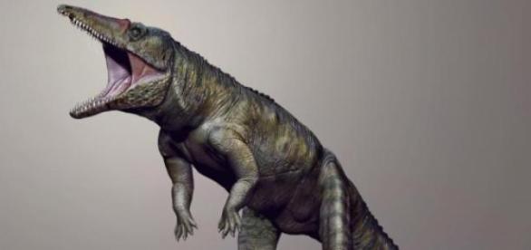 Se trata del principal antepasado del cocodrilo