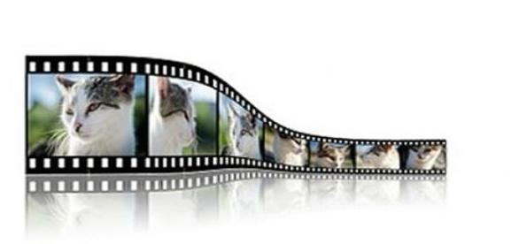 Vídeos que interagem com o aluno