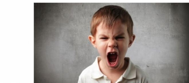 "<!--StartFragment--><span style=""font-size: 12pt; font-family: Cambria;"">Psihologii spun ca bebelusii invata si percepinca din pantecul mamei, dar si furia incepe tot de atunci.</span><!--EndFragment-->"