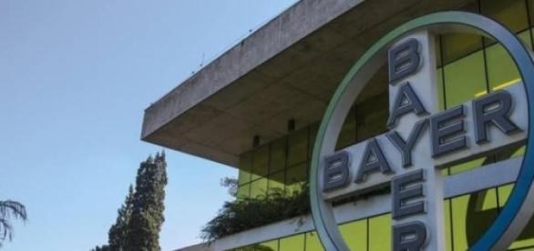 Bayer com diversas vagas de estágio