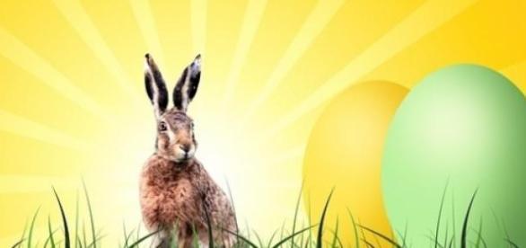 O coelho da páscoa tem concorrente pesado esse ano