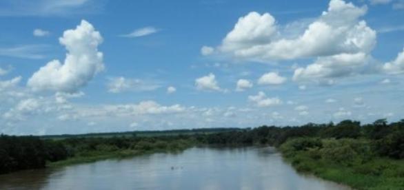 Brasileiro em geral desperdiça muita água.