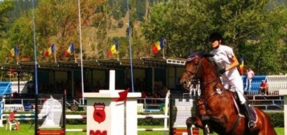 Sportul Ecvestru se muta la Piatra Neamt