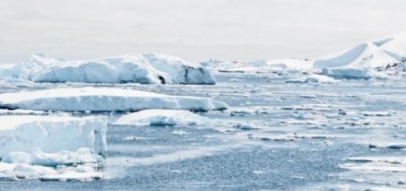 Temperaturrekord in der Antarktis.