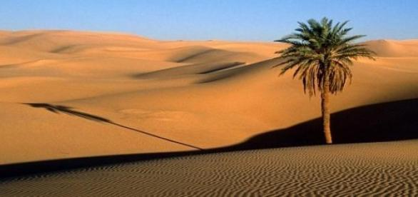 Desertul e unul din cele mai calduroase locuri