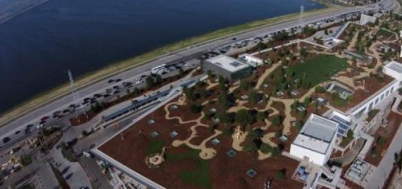 Jardín en el techo de la nueva sede de Facebook