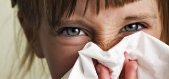 Invatati sa tratati alergiile cu remedii naturale