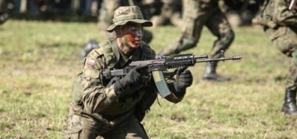 Rząd zbiera ochotników na ćwiczenia wojskwe