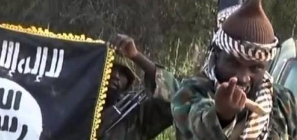 Abubakar Shekau, Boko Haram's leader