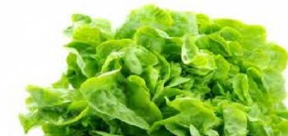 Beneficiile salatei verzi asupra organismului