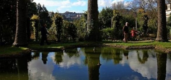 Jardim de Villar d'Allen no Porto.