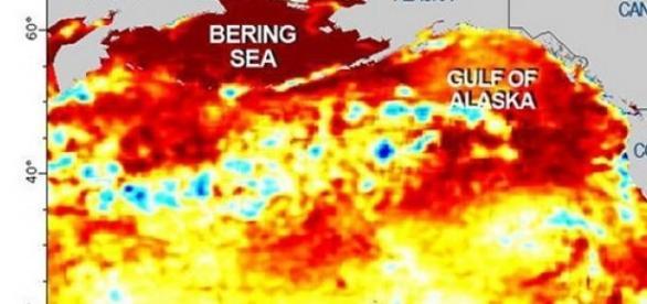 Fenomen inexplicabil aparut in ocean