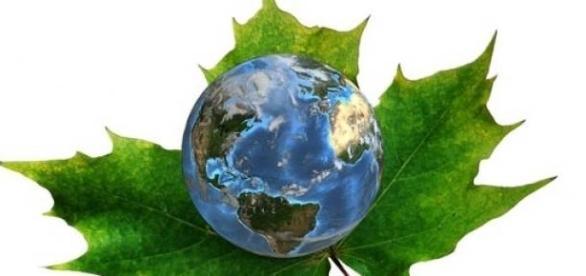 Oportunidades na área de meio ambiente