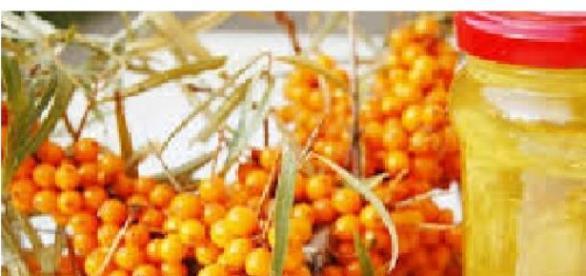 Cătina și mierea, un excelent remediu naturist