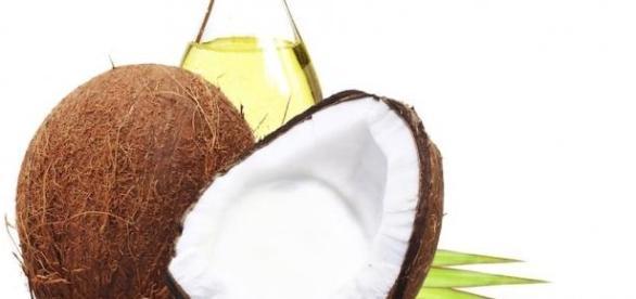 "Nuca de cocos sau ""copacul vietii"""