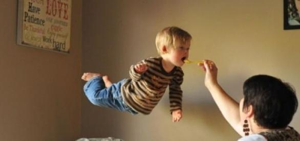 Will emprende el vuelo, su madre le da de comer