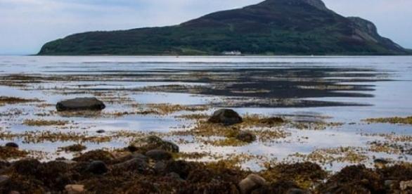 Lamlash Bay has a 'no-take zone' near it