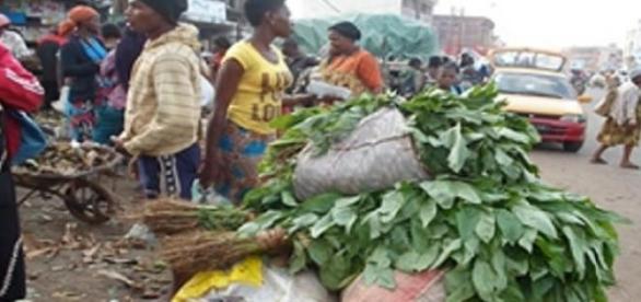 Transporteur de denrées alimentaires au Cameroun