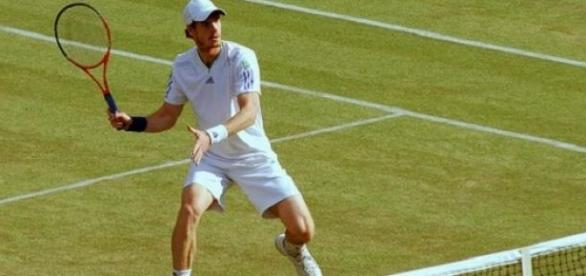 Murray will hope for Davis Cup success on grass