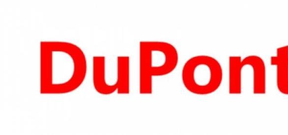 Dupont e Falconi selecionam estagiários