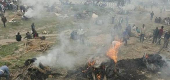 Centenas de corpos são cremados nas ruas