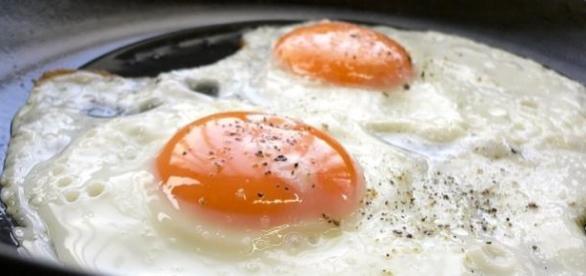 A clara do ovo é rica em proteína