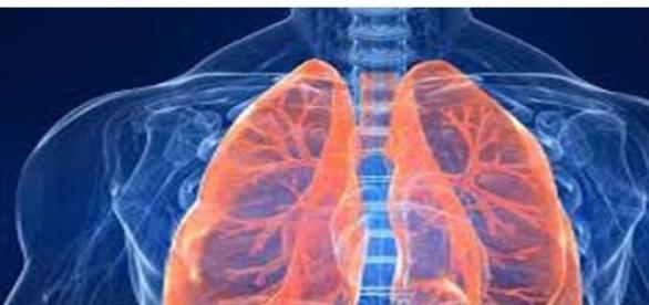Detoxifierea periodica a plamanilor