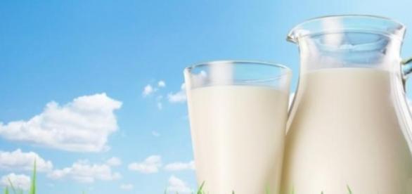 Beneficiile și proprietățile laptelui