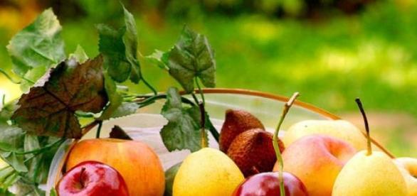 Antioxidanții protejează organismul de boli