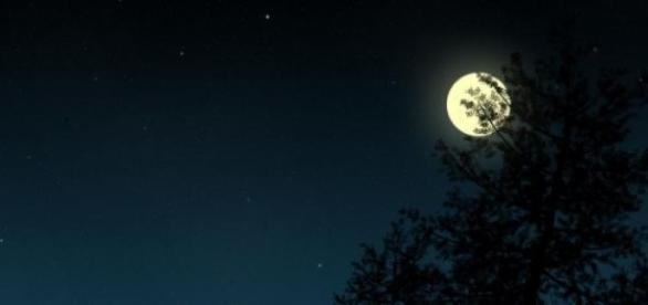Dezvoltarea vederii umane pe timp de noapte