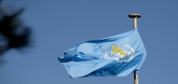 Le drapeau de l'Organisation Mondiale de la Santé