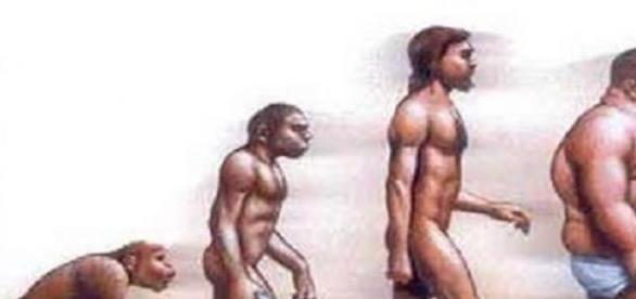 Obesidade -  uma evolução contínua