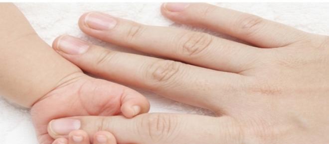 Pielea, organ al corpului uman