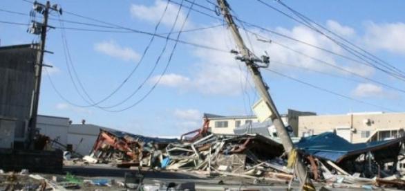 Estragos del sismo de 2011 en Japón