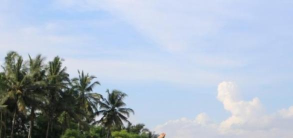 Na Bali warto stanąć na głowie dla wybranki serca