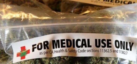 Armata italiană cultivă marijuana