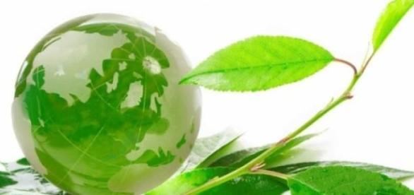 Préserver la Terre, un engagement éco-citoyen.