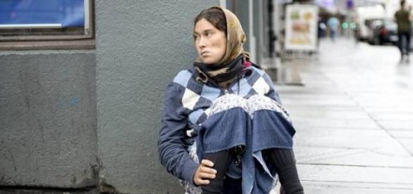 Suedia caută specialişti în cerşetorie