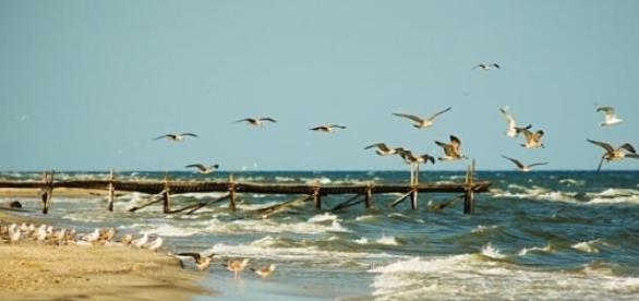 plaja Corbu, situata la 10 km de Mamaia.