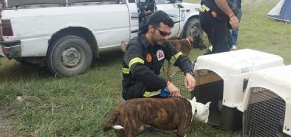 Antonio en labores de rescate